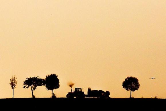 Fotojournalist - Erntezeit im Sonnenuntergang