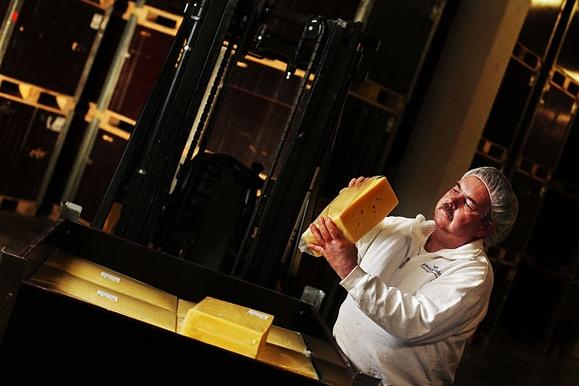 Business-Fotografie: Werbefoto Qualitätskontrolle in der Käserei des Heinrichsthaler Milchwerk